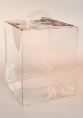 plastic box for polyhedra model