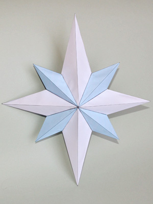 Eight pointed star net