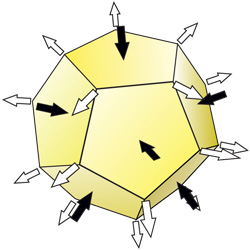 6 dodecahedron
