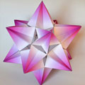 Fifth stellation icosahedron